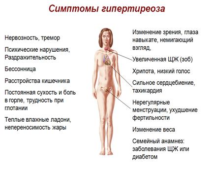 Гипотериоза